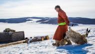 Strenger Winter bedroht mongolische Nomaden