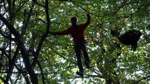 Menschen im Baum