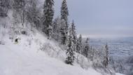 Schneemassen sind auch in Zürich und auf den Uetliberg herabgekommen.