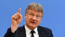 """AfD-Chef fordert Abgrenzung des """"Flügels"""" von """"jedem Extremismus"""""""