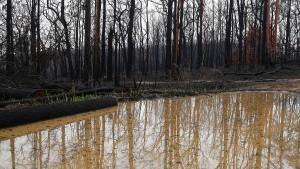 Australien kämpft mit Überschwemmungen
