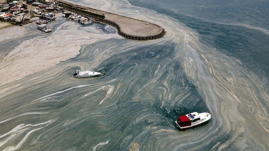 Archivaufnahme von Juni 2021: Masse von Meeresschleim schwappt an das Caddebostan-Ufer.