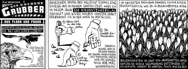 Comic / Der goldene Grubber / Folge 004