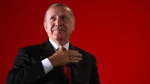 Erdogans Interessen