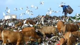 Indonesien schickt tonnenweise deutschen Müll zurück