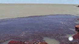Ölpest verschmutzt Brasiliens Strände