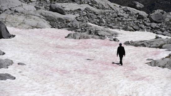 Alpen-Gletscher im Norden Italiens färbt sich pink