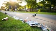 Müllberge trotz neuer Abfalleimer