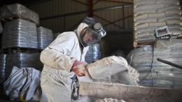 Klöckner gegen Verbot von Glyphosat