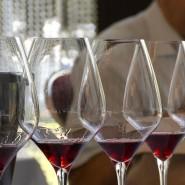 Trinken für die Wissenschaft: Untersucht wird, welchen Einfluss der Verkostungsort auf die Bewertung des Weins hat.
