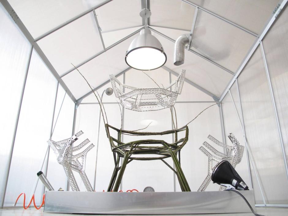 mail nder m belmesse w chst ein stuhl im walde. Black Bedroom Furniture Sets. Home Design Ideas