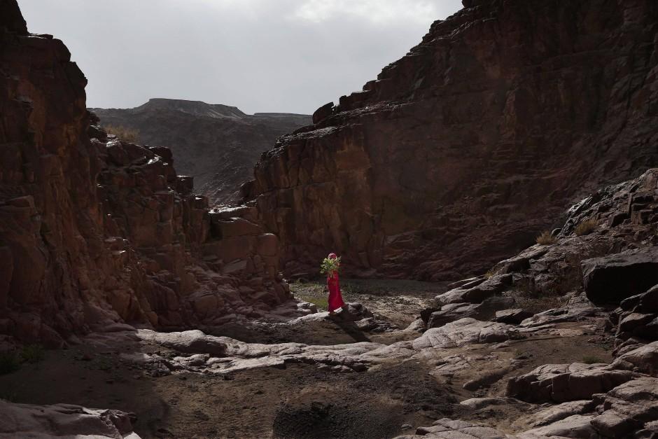 Ein junges Mädchen trägt Blumen, die sie für ihre Mutter in den Bergen gepflückt hat, nach Hause. Die beduinischen Wanderführerinnen zeigen ihren Touristinnen gerne die heimischen Heilpflanzen.