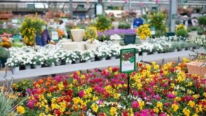 Gartenmarkt darf für Privatkunden öffnen