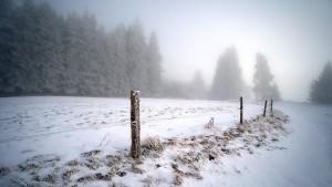 Wind und Nebel an Heiligabend