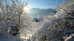 Weihnachten im Winter-Wonderland