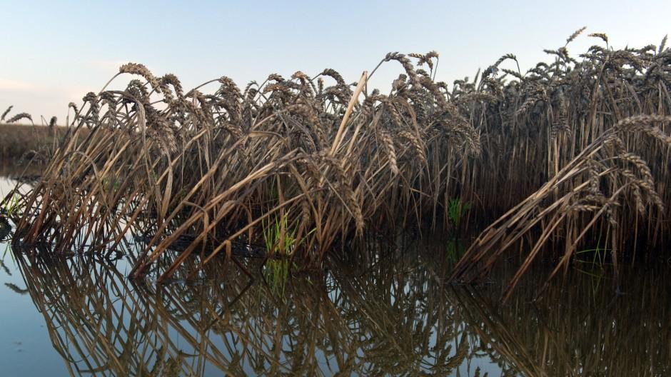Nach den Unwettern im Südwesten Deutschlands stehen vielerorts Felder unter Wasser.