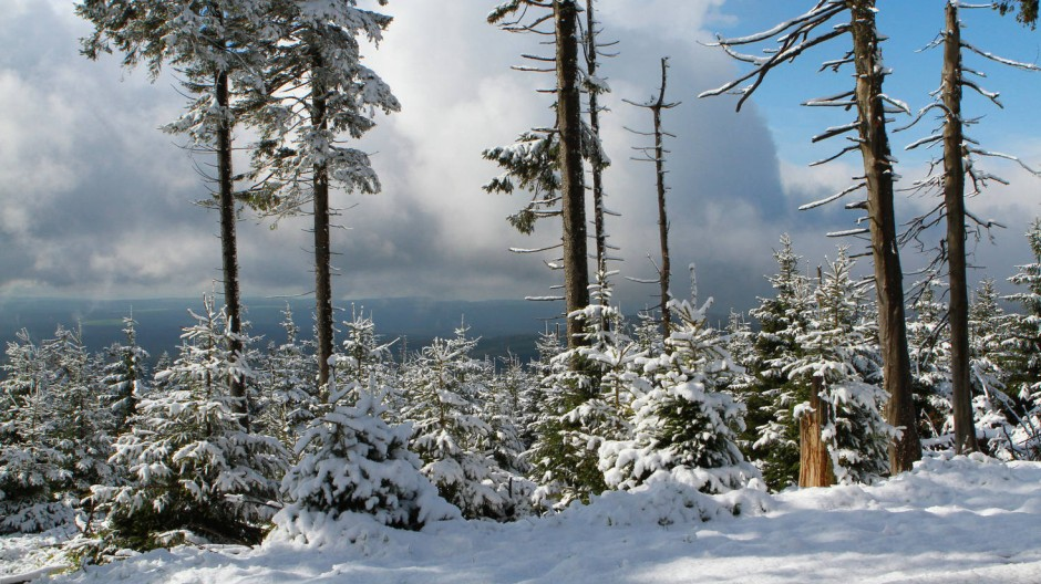 Auf dem Brocken: Winteridylle im Mai.