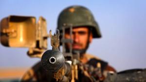 Parlamentarier fordern Votum zu Waffen