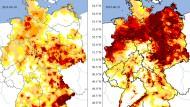 Fachleute des Helmholtz-Zentrums für Umweltforschung errechnen gegenwärtig dramatischere Werte im Vergleich mit dem Vorjahr.