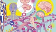 Wildes Straßennetz: der Gehirnstamm