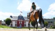 Vorgeführt: Eine angehende Pferdefachwirtin übt auf dem Paradeplatz vor dem Reithaus des Dillenburger Landgestüts.