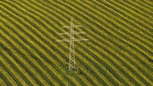 Lahmes Internet erzürnt Bauern