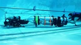 Musk schlägt Mini-U-Boot für Höhlenrettung vor