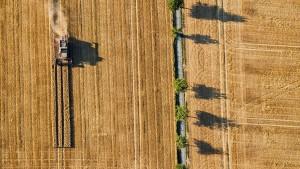 Bauern scheuen Kosten einer Dürre-Versicherung