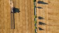 Ein Mähdrescher fährt über ein Getreidefeld in Niedersachsen.