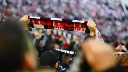 Die pure Liebe zur Frankfurter Eintracht