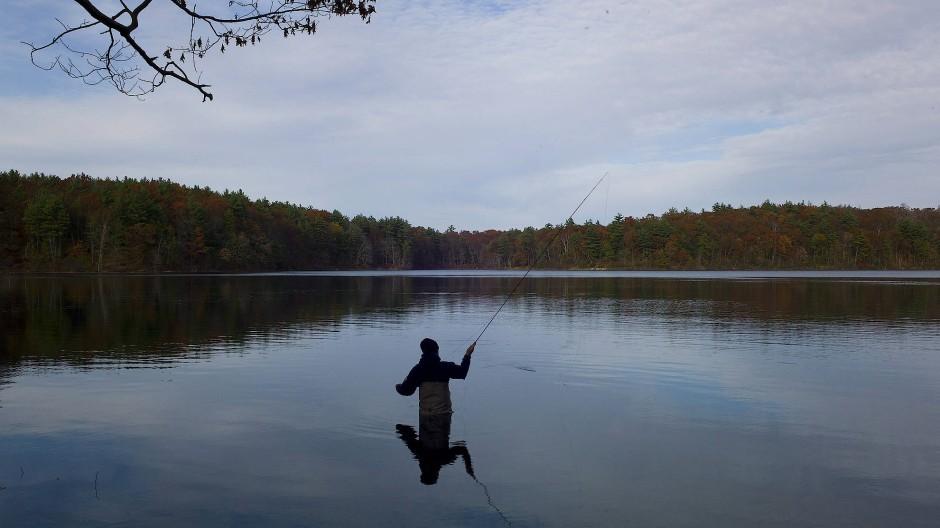 Ein Angler am Walden Pond, dem Teich, an dem Henry David Thoreaus berühmte Hütte stand. Auf dieses Aussteigerideal bezieht sich das Pseudonym H.D. Walden.