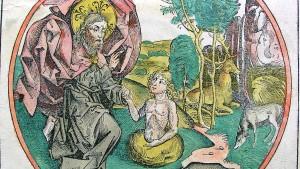 Adam, Eva und der Stegosaurus
