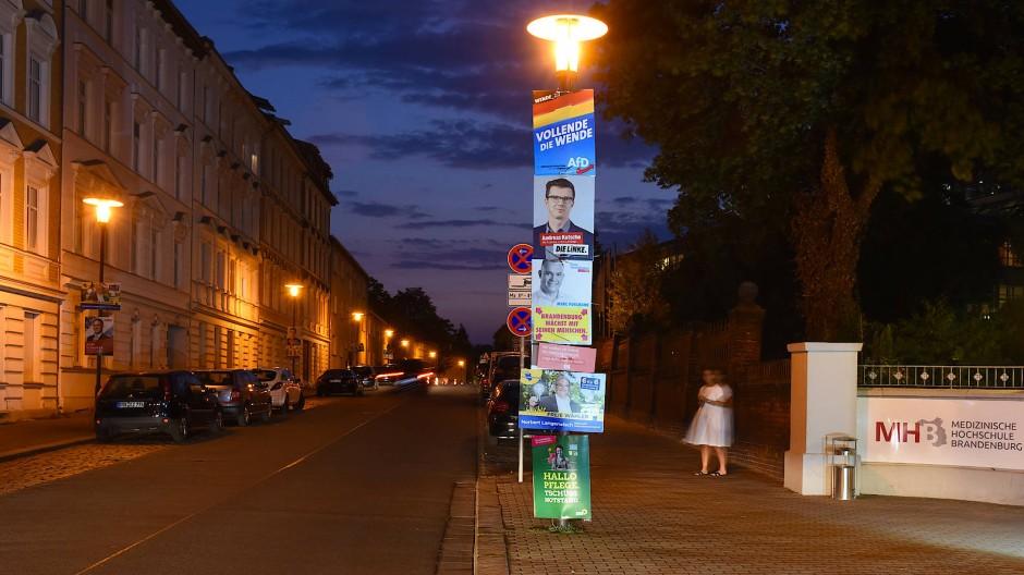 AfD-Wahlplakat in Brandenburg