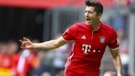 Torlieferant: Die Bayern setzen auf die mitreißende Art ihres Stürmers Robert Lewandowski.
