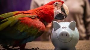 Die Sparer tragen die Kosten