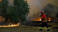 Die meisten Waldbrände gelöscht