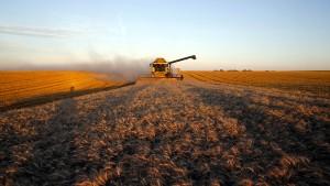 Bauern bekommen Geld fürs Schuldenmachen