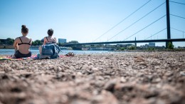 Hochsommerliche Impressionen aus Düsseldorf