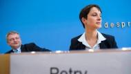 Die beiden AfD-Bundesvorsitzenden Jörg Meuthen und Frauke Petry