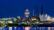 Der Bayer-Konzern möchte zum größten Agrarchemiekonzern der Welt aufsteigen.