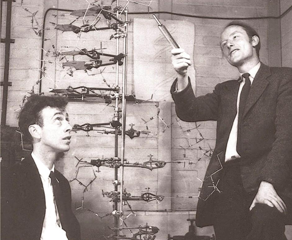 Ein berühmtes Entdecker-Bild: James Watson (links) und Francis Crick lassen sich - wohl noch im Frühjahr 1953 -  in ihrem Labor in Cambridge mit dem Modell der DNA ablichten