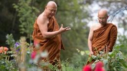 Buddhismus 2.0 braucht kein Karma