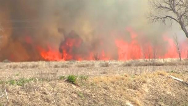 Waldbrand vernichtet Fläche von 170 Fußballfeldern