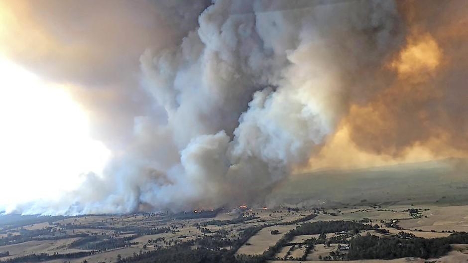 Erschreckende Bilder, die der Klimawandel mit sich bringt: Im Dezember 2019 bricht in Bairnsdale in Australien ein Feuer aus.
