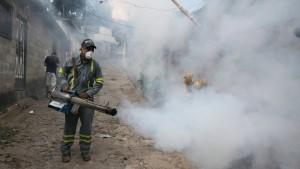 Aktionsplan gegen Ausbreitung des Zika-Virus