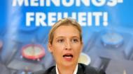 AfD erstreitet sich Tagungsraum in Düsseldorf vor Gericht