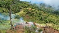 Abholzung: Ein fast verlorenes Paradies