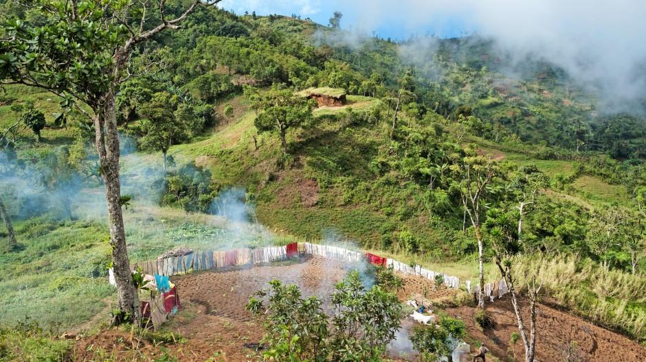 Die Bevölkerung wächst und damit der Bedarf an Feldern, für die Wälder weichen müssen, wie hier auf Anjouan zu sehen ist.
