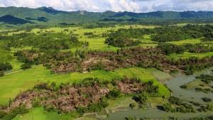 UN: Verbliebene Rohingya sollen ausgehungert werden