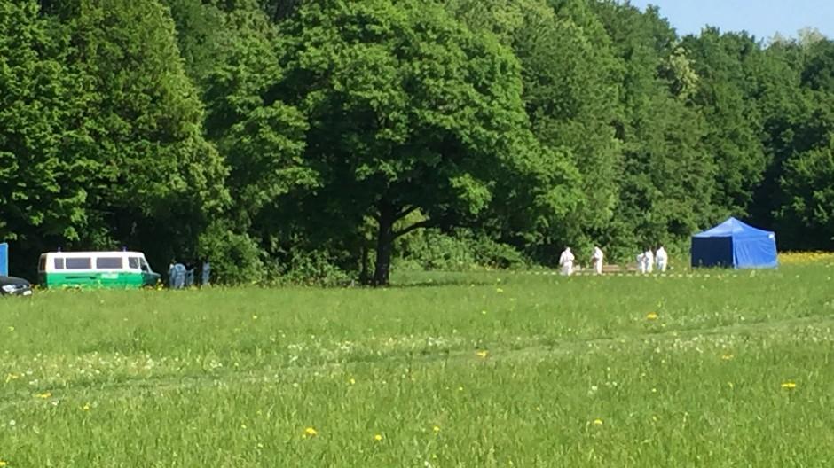Die Leiche wurde im Frankfurter Niddapark gefunden